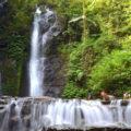 5 Spot Wisata Air Terjun di Bogor yang Menarik dan Populer 120x120 » 5 Tempat Wisata Air Terjun di Bogor yang Paling Indah dan Populer