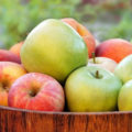 Manfaat Buah Apel Bagi Kesehatan Tubuh 120x120 » Manfaat dan Kandungan Nutrisi Buah Apel yang Baik Bagi Kesehatan Tubuh