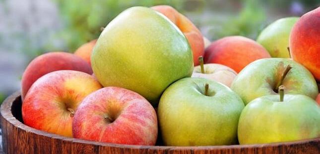 Manfaat Buah Apel Bagi Kesehatan Tubuh 645x312 » Manfaat dan Kandungan Nutrisi Buah Apel yang Baik Bagi Kesehatan Tubuh