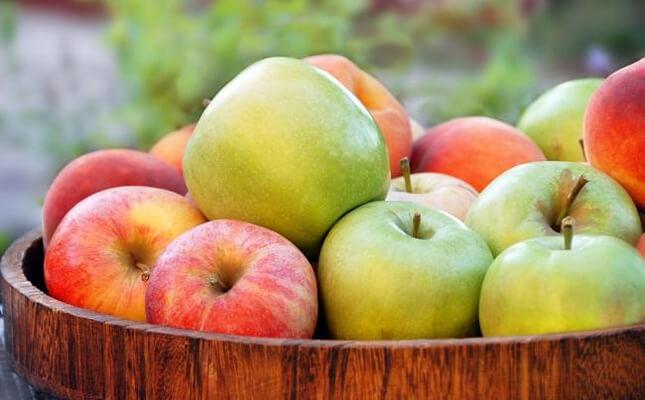 Manfaat Buah Apel Bagi Kesehatan Tubuh » Manfaat dan Kandungan Nutrisi Buah Apel yang Baik Bagi Kesehatan Tubuh