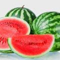 Manfaat Buah Semangka Bagi Kesehatan Tubuh 120x120 » Manfaat dan Kandungan Nutrisi Buah Semangka Bagi Kesehatan Tubuh