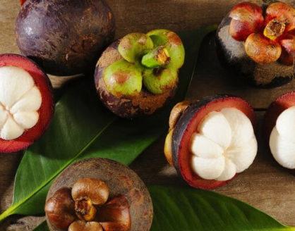 Manfaat Manggis Bagi Kesehatan Tubuh 418x328 » Kandungan Gizi dan Manfaat Buah Manggis bagi Kesehatan Tubuh
