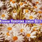 cara menanam hidroponik dengan botol bekas 150x150 » Cara Budidaya Tanaman Metode Hidroponik dengan Botol Bekas
