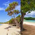 destinasi wisata pantai nusa dua bali 120x120 » Nikmati Pesona Keindahan Objek Wisata Pantai Nusa Dua Bali