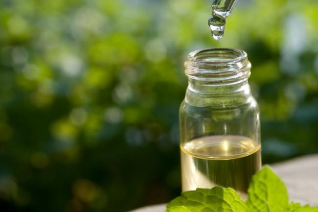 tea tree oil » Cara Mengatasi Jerawat Meradang Menggunakan Bahan Alami