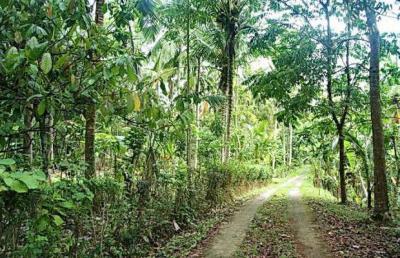 tempat wisata blitar jatim agrowisata karangsari » Tempat Wisata di Blitar Selain Makam Bung Karno Yang Wajib Dikunjungi