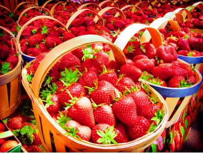 tempat wisata ciwidey bandung kebun strawberi » Ini Dia Tempat Wisata di Ciwidey Yang Wajib Dikunjungi saat Liburan