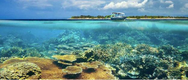 view bawah laut wisata gili meno lombok » Nikmati Indahnya Panorama Gili Meno Destinasi Wisata Alam Lombok yang Memukau