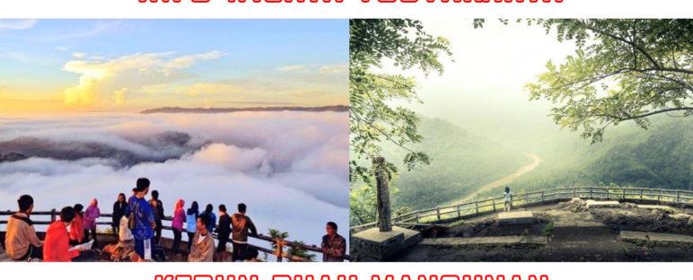 wisata alam jogja kebun buah mangunan 772x312 » Kebun Buah Mangunan Jogja Bikin Kamu Serasa Liburan Di Langit