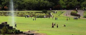 wisata kebun raya bogor 300x122 » 4 Keunikan Kebun Raya Bogor, Wisata Kebanggaan Kota Hujan