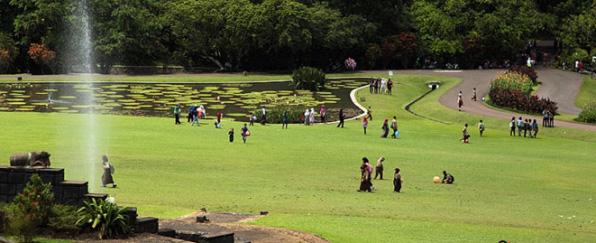 wisata kebun raya bogor » 4 Keunikan Kebun Raya Bogor, Wisata Kebanggaan Kota Hujan
