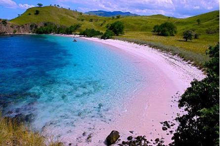 wisata pantai pink pulau komodo » Kunjungi 5 Pantai Terindah di Indonesia sebagai Destinasi Liburan Mendatang
