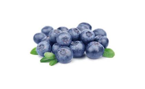 zat dalam bluberi 504x312 » 6 Makanan Sederhana yang Dapat Meningkatkan Fokus dan Konsentrasi